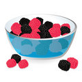 Free Wild Berries In Bowl Stock Images - 21477314