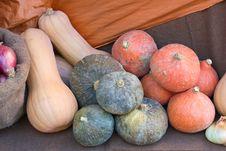 Free Pumpkins Stock Image - 21473701