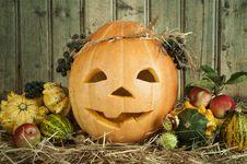 Free Jack O  Lantern Stock Images - 21475194