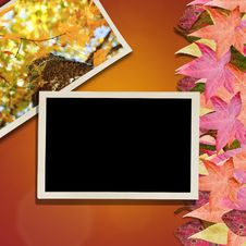 Free Autumn Leaves And Photo Background Stock Photography - 21476322