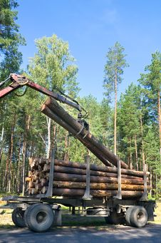 Free Shipping Timber Stock Image - 21479181