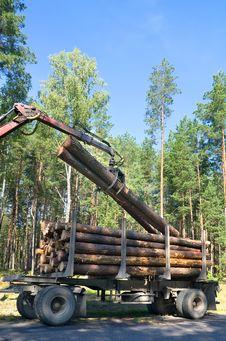Free Shipping Timber Stock Image - 21479181