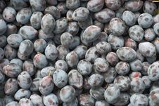 Free Plums Royalty Free Stock Photo - 21479935