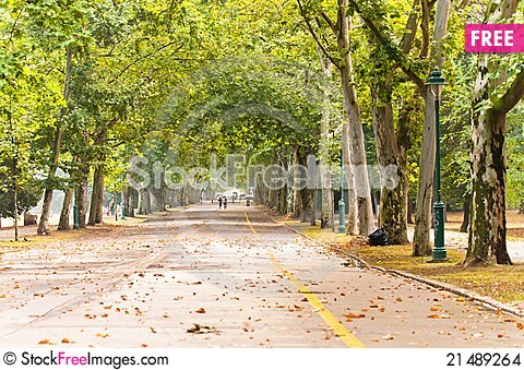 Free A Long Road In The Park Stock Images - 21489264