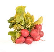 Free Garden Radish Bunch Royalty Free Stock Photo - 21482935