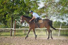 Free Girl Riding A Horse Stock Photos - 21486773