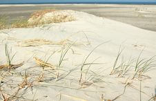 Free Sandy Dunes Royalty Free Stock Images - 21488699