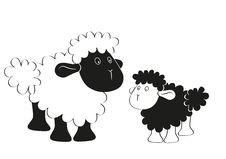 Free Black White Sheep Royalty Free Stock Photo - 21488765