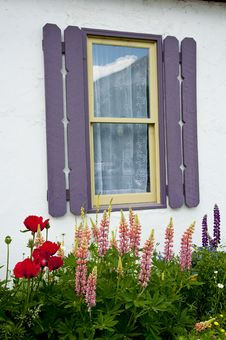 Free Little White Cabin With Flowers Stock Image - 21493411