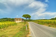 Free Tuscany Panorama - Italy Royalty Free Stock Image - 21496006