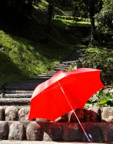 Free Umbrella Royalty Free Stock Photo - 2153955