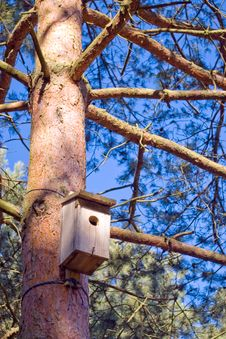 Free Bird House On Tree Trunk. Royalty Free Stock Photos - 2154788
