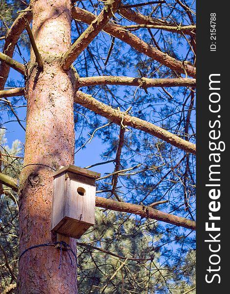 Bird house on tree trunk.