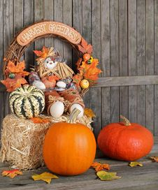 Free Autumn Decoration Royalty Free Stock Photography - 21504467