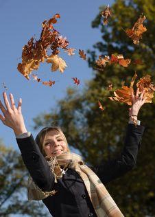 Free Autumn Fun Royalty Free Stock Photo - 21508825
