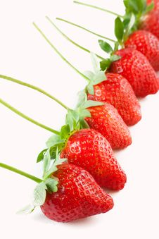 Free Red Strawberries In A Row Stock Photo - 21509810
