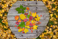 Free Autumn Leaves On Wooden Cover Stock Photography - 21511492