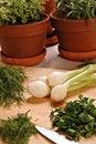 Free Fresh Herbs Royalty Free Stock Photo - 21513365