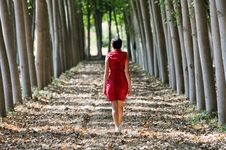 Free Women Dressed In Red Walking In The Forest Royalty Free Stock Photo - 21511865