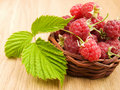 Free Raspberries Royalty Free Stock Photography - 21526847