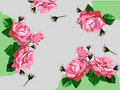 Free Background With Red Roses Royalty Free Stock Photos - 21527818