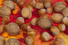 Free Walnuts And Hazelnuts Royalty Free Stock Photos - 21522958