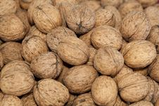 Free Walnuts Royalty Free Stock Photo - 21523035