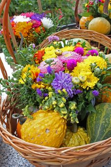 Free Flowers And Pumpkins Royalty Free Stock Photography - 21523777