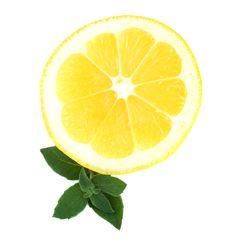 Free Lemon And Mint Stock Photo - 21526750