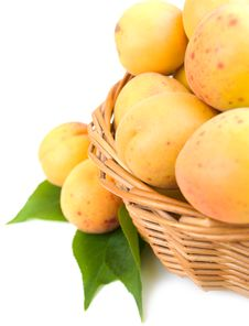 Free Apricots In The Basket Stock Photos - 21526863
