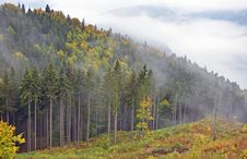 Free Fog Over Valley Stock Photography - 21528442