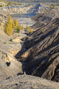 Free Sand Canyon With Yellow Autumn Birches Royalty Free Stock Photo - 21538305
