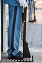 Free Castle Guard, Detail Stock Images - 21539184