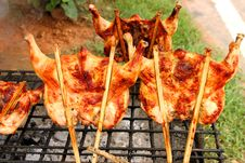 Free Grilled Chicken Royalty Free Stock Photography - 21530737