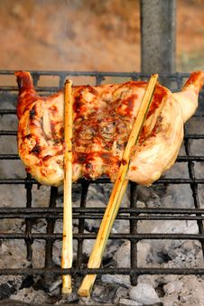 Free Grilled Chicken Stock Photos - 21530753