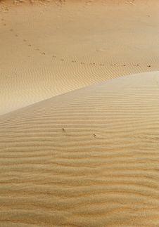 Free Deserts Stock Photos - 21533423