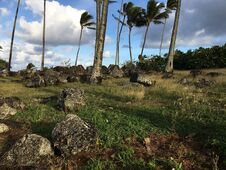 Free Spring At Hikinaakala Heiau In Wailua On Kauai Island, Hawaii. Royalty Free Stock Photos - 215393648
