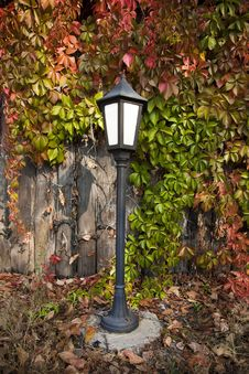 Free Street Lantern On Autumn Foliage Stock Photos - 21540673