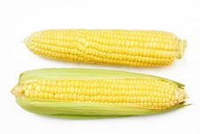 Free Fresh Corn Vegetable Royalty Free Stock Image - 21541466