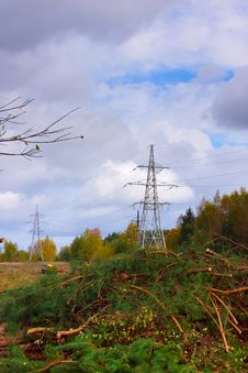 Free Works In Electricity Line, Wood Cutting Royalty Free Stock Photo - 21543905