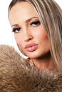 Free Beautiful Model In Fur Royalty Free Stock Photos - 21553858