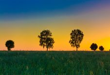 Free Sunset Over Trees Stock Photo - 21550020