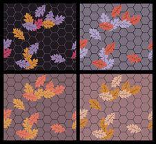Free Autumn Sidewalk Royalty Free Stock Images - 21553729