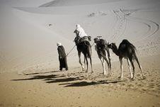 Free Camel Ride In Sahara Royalty Free Stock Images - 21554699