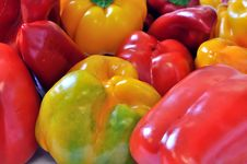 Free Assorted Fresh Peppers Royalty Free Stock Photos - 21557728