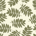 Free Seamless Pattern With Leaves Of A Mountain Ash Stock Image - 21560041