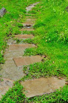 Free Pathway In A Green Garden Stock Photos - 21561453
