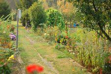 Free Garden Stock Photo - 21564850