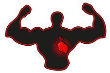 Free Heart Royalty Free Stock Photos - 21565788