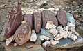 Free Tibetan Prayer Stones Stock Image - 21574171